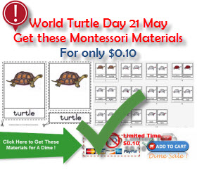 Montessori World Turtle Day 21 May