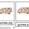 Montessori Materials - Guinea Pig Nomenclature Cards Age 3 to 6