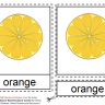 Montessori Materials Orange Nomenclature Cards Age 3 to 6