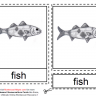 Montessori Materials - Fish Nomenclature Cards Age 6 to 9