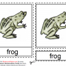 Montessori Materials - Frog Nomenclature Cards Age 3 to 6