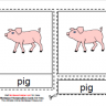 Montesori Material Cards, Parts of the Pig, Age 3 to 6