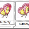 Montessori Materials - Butterfly Nomenclature Cards Age 6 to 9