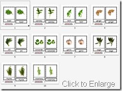 Montessori Herb Cards