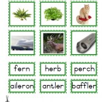 "Montessori Language Materials Green Consonant ""er"", Age 3 to 6.pdf"