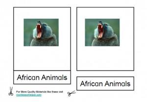 Montessori African Animals Materials