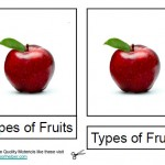 Montessori Materials, Fruit Nomenclature Cards, Age 1 to 6