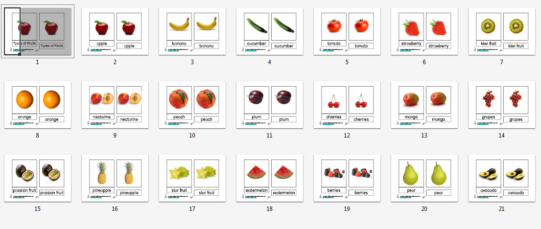 Montessori Materials Fruit Nomenclature Cards Age 1 To 6