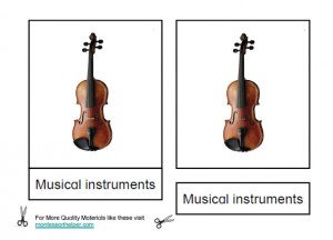 Montessori Musical Instruments Age 6 to 9 Materials