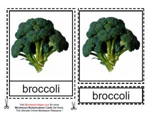 Montessori Types of Vegetables Materials