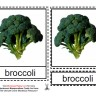 Montessori Materials, Vegetable Cards, Age 1 to 6