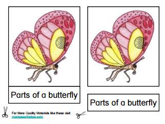 PartsButterfly