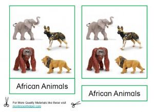 MontessoriAfricanAnimalsThumb