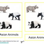 Montessori Asian Animals Printable Age 3 to 6
