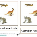 Montessori Australian Animals Printable Age 3 to 6
