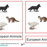 Montessori European Animals Printable Age 3 to 6