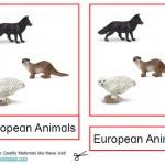 Montessori European Animals Printable Age 3 to 6