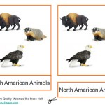Montessori North American Animals Printable Age 3 to 6