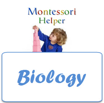BiologyCourse