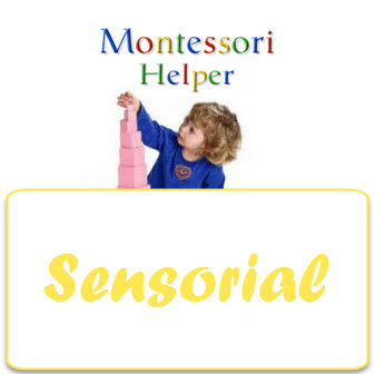 SensorialCourse