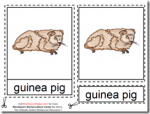 Montessori Materials – Guinea Pig Nomenclature Cards Age 3 to 6