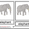 Montessori Materials – Elephant Nomenclature Cards Age 3 to 6