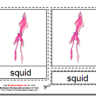 Montessori Downloadable PDF, Parts of the Squid, Age 3 to 6