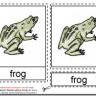 Montessori Materials – Frog Nomenclature Cards Age 3 to 6