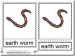 Montessori Materials – Earthworm Nomenclature Cards Age 6 to 9