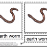 Montessori Materials – Earthworm Nomenclature Cards Age 6 to 9