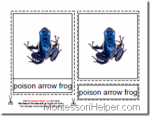 Montessori Materials, Types of Frogs Nomenclature Cards, Age 3 to 6