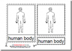 Montessori PDF Materials, The Parts of the Human Body, Age 3 to 6