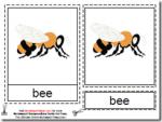 Montessori Bee Materials, Age 3 to 6