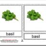Montessori Herbs Materials, Age 3 to 6
